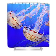 Jellyfish 9 Shower Curtain