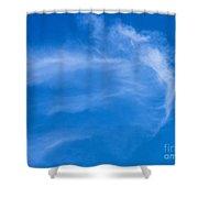 Jellyfish Cloud Shower Curtain