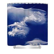 Jellyfish Clouds Shower Curtain