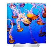 Jellyfish In Abundance Shower Curtain