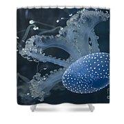 Jellyfish In Blue Shower Curtain