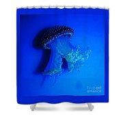 Surreal Australian Jellyfish In Blue Shower Curtain
