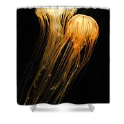 Jellyfish On Black Shower Curtain