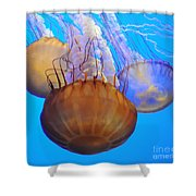 Jellyfish Trio Shower Curtain