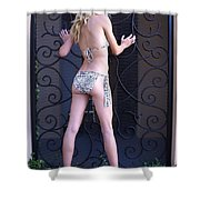 Jennie With Iron Gate 3 Shower Curtain