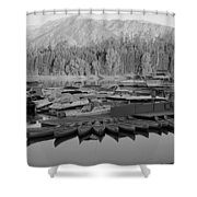 Jenny Lake Wyoming   Shower Curtain