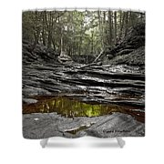 Jeremy River Shower Curtain