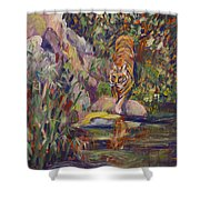 Jerrys Tiger Shower Curtain