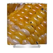 Jersey Sweet Corn Shower Curtain