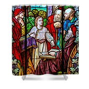 Jesus Teaches In The Temple Shower Curtain