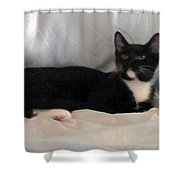 Jetta Shower Curtain