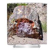 Jewel In Petrified Forest Shower Curtain