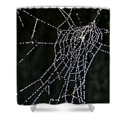Jewel In The Crown Shower Curtain