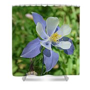 Jewel In The Glade  Shower Curtain