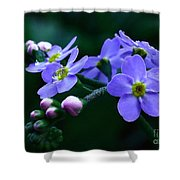 Jewel In The Shadows Shower Curtain