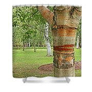 Jewel In The Woods Shower Curtain