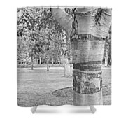 Jewel In The Woods In Black And White Shower Curtain