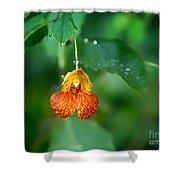 Jewel Like II Shower Curtain