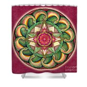 Jewel Of The Heart Mandala Shower Curtain
