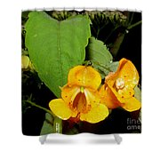 Jewel Weed Shower Curtain