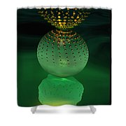 Jeweled Astrophytum  Shower Curtain