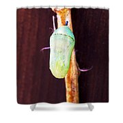 Jeweled Casing Shower Curtain