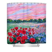 Jeweled Sunset Shower Curtain
