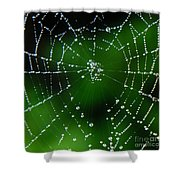 Jeweled Web Shower Curtain
