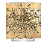 Jewels In The Sand Shower Curtain