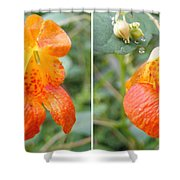Jewelweed Flower In Stereo Shower Curtain