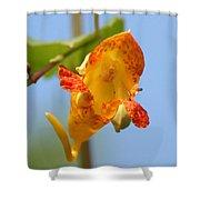 Jewelweed Open Door  Shower Curtain