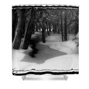 Job's Winter Stream Shower Curtain