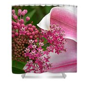 Asclepias And Friend Shower Curtain