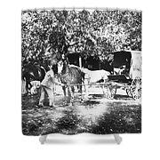Johnston Horse Wagon Shower Curtain