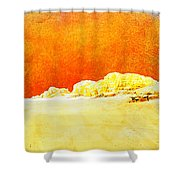 Jordan 06 Shower Curtain by Catf