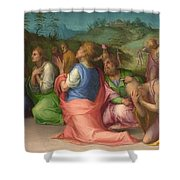 Joseph's Brothers Beg For Help Shower Curtain