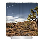 Joshua Tree 15 Shower Curtain