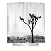 Joshua Tree No. 02 Shower Curtain