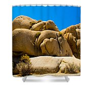 Joshua Tree 29 Shower Curtain
