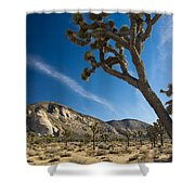 Joshua Tree Afternoon Shower Curtain