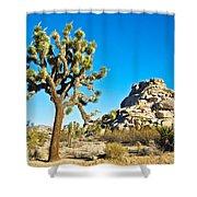 Joshua Tree And Jumbo Rocks Near Quail Spring In Joshua Tree Np-ca  Shower Curtain