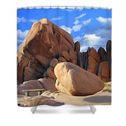 Joshua Tree Anomoly Shower Curtain