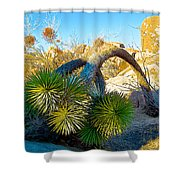 Joshua Tree Bowing Down At Quail Springs In Joshua Tree Np-ca Shower Curtain