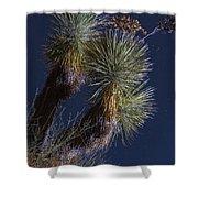 Joshua Tree By Moonlight Shower Curtain