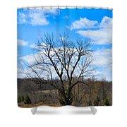 Joshua Tree Country Style Shower Curtain