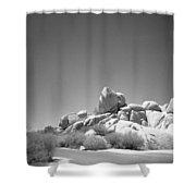 Joshua Tree Holga 3 Shower Curtain