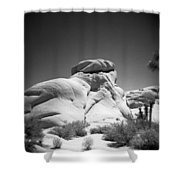 Joshua Tree Holga 6 Shower Curtain