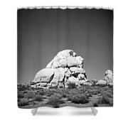 Joshua Tree Holga 9 Shower Curtain