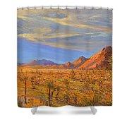 Joshua Tree National Park 2 Shower Curtain