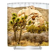 Joshua Tree National Park Skull Rock Shower Curtain